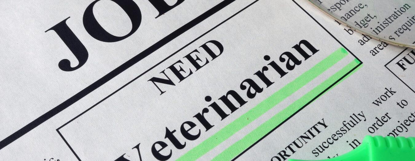 Register for Veterinary Jobs